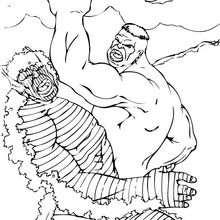 Hulk duelliert mit Abomination