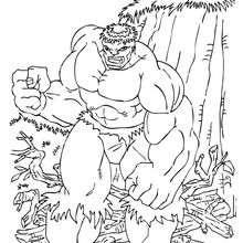 Hulk wird sauer