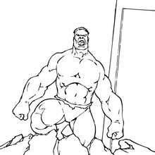 Hulk der Zerstörer