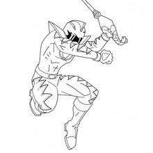Der Sprung des Ninja