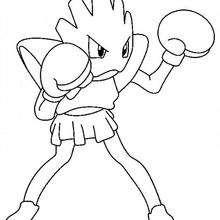 Nockchan Pokemon