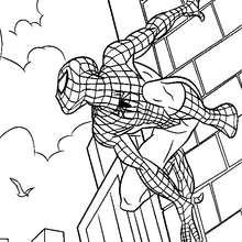 Spiderman klettert Wände hoch