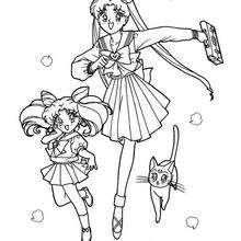 Sailor Moon geht zur Schule
