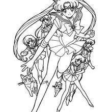 Sailor Kämpferteam