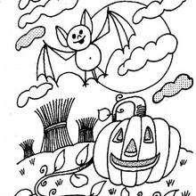 Halloween Kürbis und Fledermaus