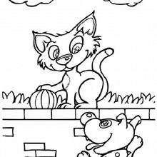 Katze auf der Mauer zum Ausmalen