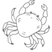 Krabbe zum Ausmalen
