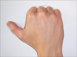 Wie du einen Elefant mit deiner Hand malst