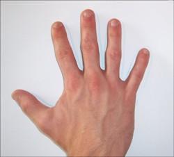 Wie du eine Krake mit deiner Hand malst