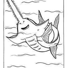 Sägefisch zum Ausmalen