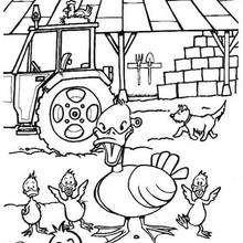 Ente und Enterich zum Ausmalen