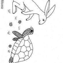 Hase und Schildkröte zum Ausmalen