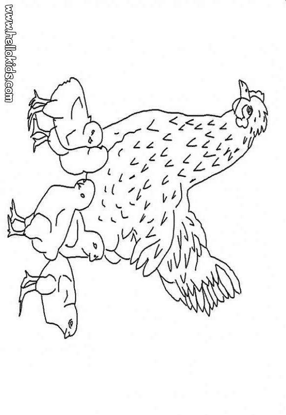 henne und hühner zum ausmalen zum ausmalen  dehellokids
