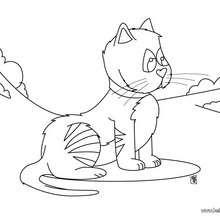 Katze zum Ausmalen