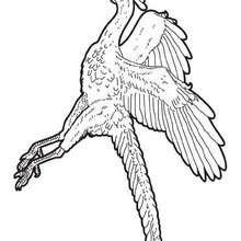 Archaeopteryx zum Ausmalen