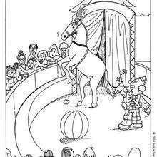 Clown und Pferd zum Ausmalen