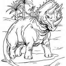 Triceratops und Palmen zum Ausmalen