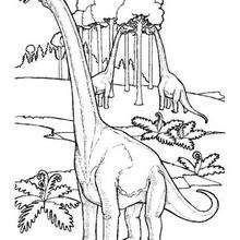 Fressender Brachiosaurus zum Ausmalen