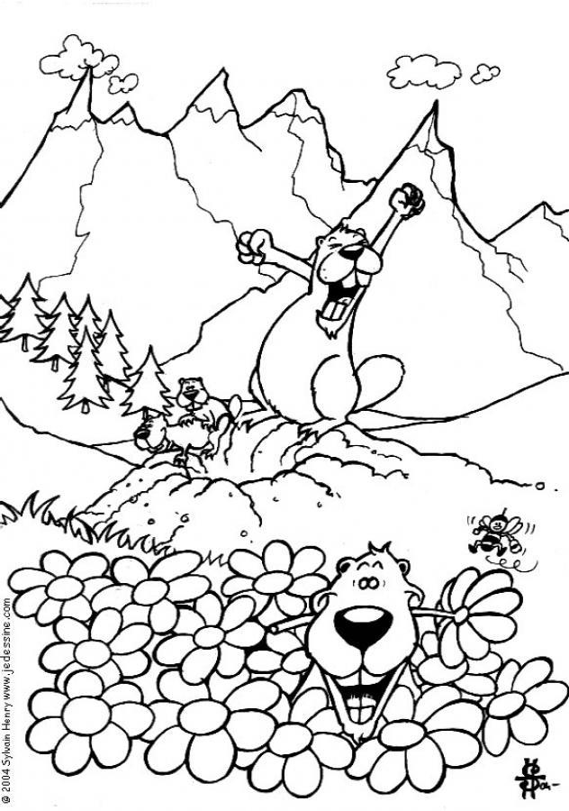 Murmeltier zum ausmalen zum ausmalen - Coloriage marmotte ...