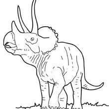 Großer Triceratops zum Ausmalen