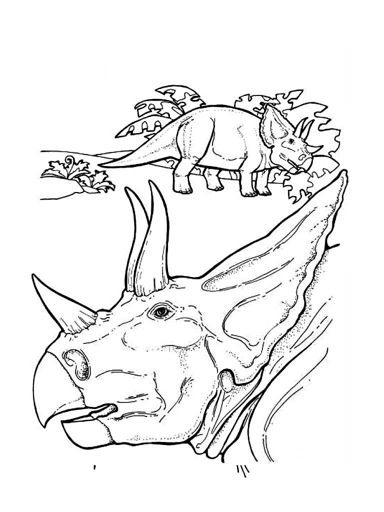 Ausmalbilder Dinosaurier Kostenlos Ausdrucken : Dinosaurier Zum Ausmalen Ausmalbilder Ausmalbilder Ausdrucken