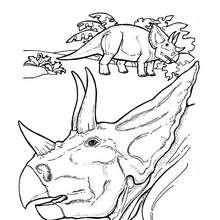 Triceratops' Kopf zum Ausmalen