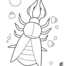 Komischer Käfer zum Ausmalen