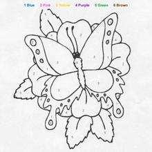 Großer Schmetterling Ausmalen nach Zahlen