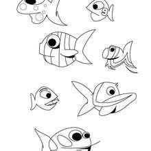 Fische zum Ausmalen