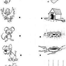 Verbinde die Tiere mit ihrem Zuhause