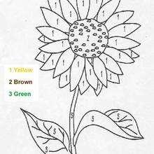 Blume Ausmalen nach Zahlen