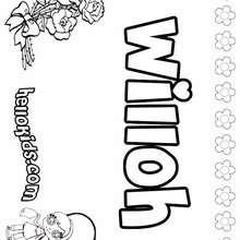 Willoh