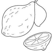 Zitrone zum Ausmalen
