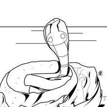 Kobraschlange zum Ausmalen