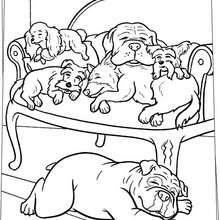 Schlafende Hunde zum Ausmalen
