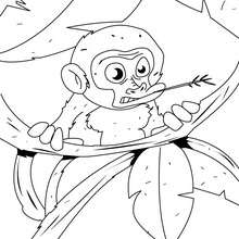 Affenbaby im Baum zum Ausmalen