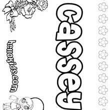 Cassey