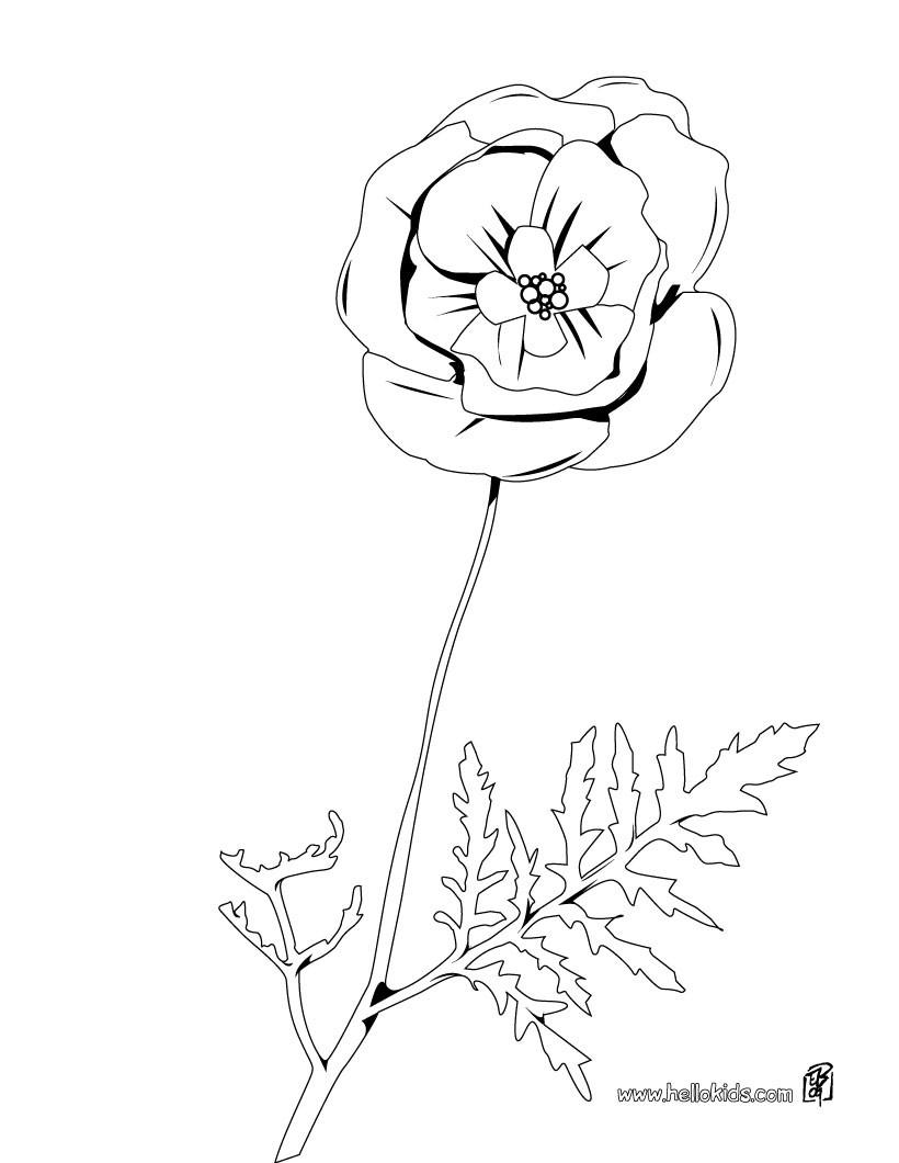 Tulpe zum ausmalen zum ausmalen - de.hellokids.com