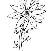 Sonnenblume zum Ausmalen