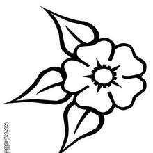 Dreiblattblume zum Ausmalen