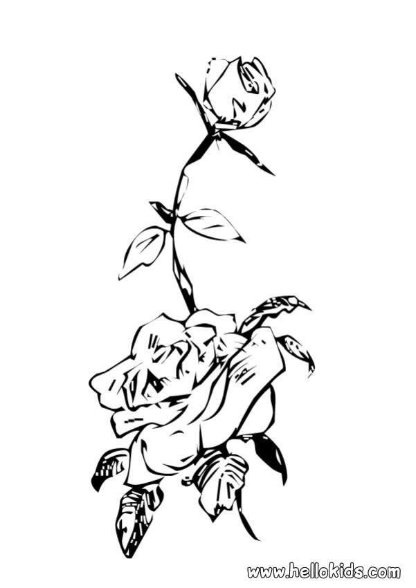 Wildrose zum ausmalen zum ausmalen - Fleur rose dessin ...