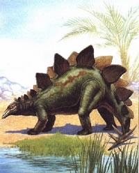 Wie man einen Stegosaurus malt