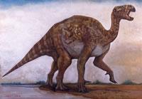 Wie man einen Iguanodon malt