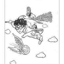 Harry Potter fliegt zum Ausmalen
