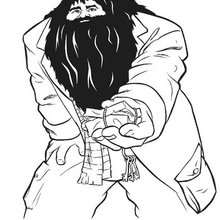 Hagrid Rubeus zum Ausmalen