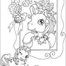 Ponys Portrait zum Ausmalen