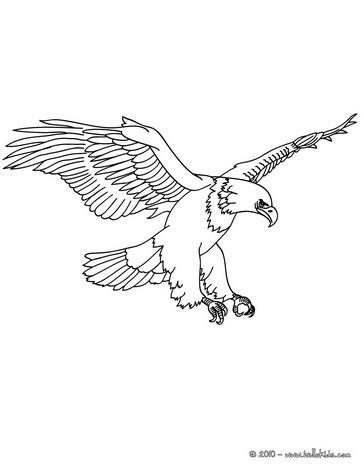 Adler Bild Zum Ausmalen Zum Ausmalen De Hellokids Com