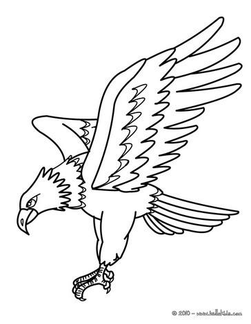 Adler bild zum ausmalen zum ausmalen  dehellokidscom
