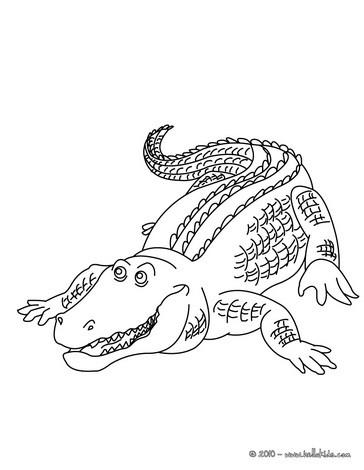 Reptil Zum Ausmalen Ausmalbilder Ausmalbilder Ausdrucken De