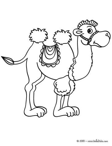 Kamel zum ausmalen zum ausmalen  dehellokidscom